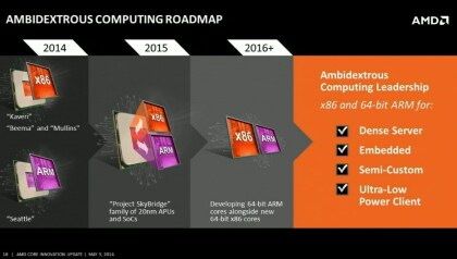 AMD Project Skybridge