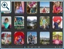 Aperture, iPhoto und Lightroom