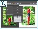 FotoSketcher - Bild 2