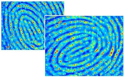 Vkansee Fingerabdruck-Sensor