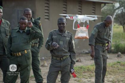 Drohnen zum Schutz von Elefanten