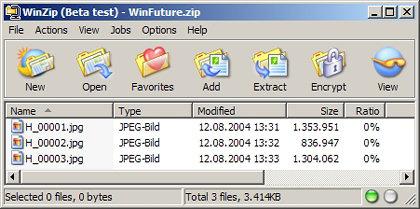 Winzip Final 10.0.6685