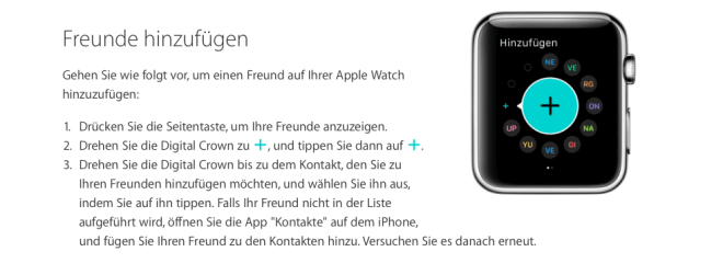 Apples Windows-Logo
