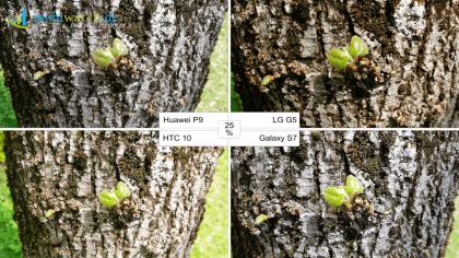 Kamera-Vergleich: Huawei P9, LG G5, HTC 10 und Galaxy S7