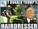 Donald Trump-Memes