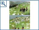 """Nordkorea: Die Photoshop-""""Künstler"""" der KCNA - Bild 4"""