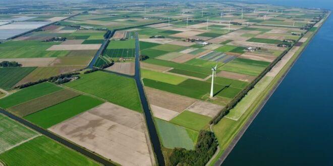 Microsoft: Windfarm