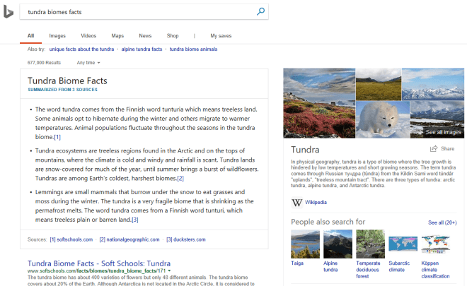 Bing: Neue Informations-Zusammenfassung