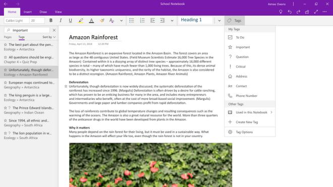 OneNote für Windows 10