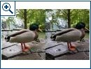 Huawei Mate 20 Pro vs. Google Pixel 3 XL Kamera-Vergleich - Bild 2