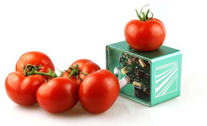 Food-Scanner des Fraunhofer-Instituts