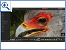 ACDSee Photo Studio Standard - Bild 4