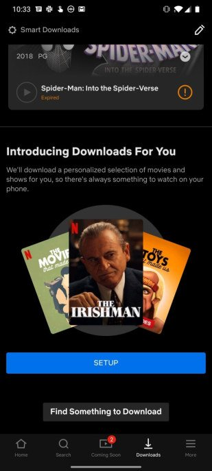 Netflix: Downloads For You