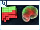 Die ersten lebenden, programmierbaren Organismen (PNAS)