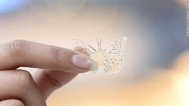 Schmetterling aus altem Frittenfett