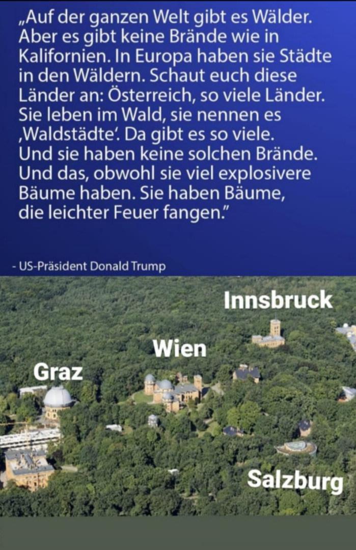 """Österreichische """"Waldstädte"""""""