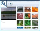 Windows Vista Movie Maker