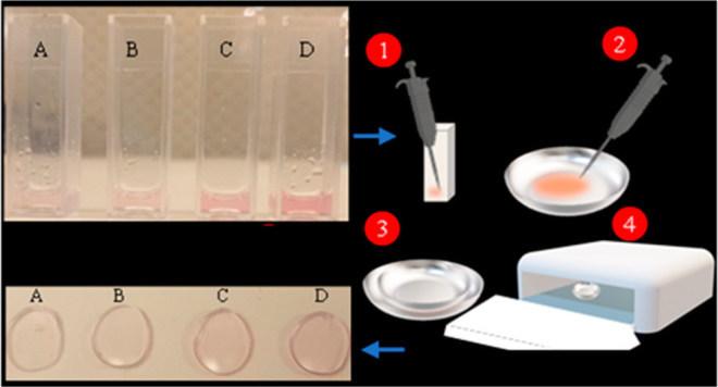 Kontaktlinsen für Rot-Grün-Farbsehschwäche (ACS Nano)