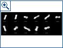 """ESO: """"Hundeknochen-Asteroid"""" Kleopatra - Bild 2"""