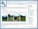 Windows Live Mail & Windows Live Writer