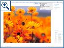 Windows Live 3.0 Beta
