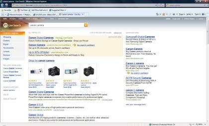 Windows Live Search Kumo