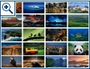Bing's Best - Windows 7 Themepack