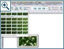 Microsoft Office f�r Mac 2011