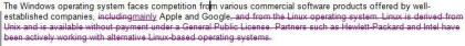 Auszug aus Microsofts SEC-Dokumenten