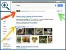 """Google-Suche """"Your World"""""""
