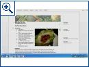 Office 15 auf Windows 8 für ARM