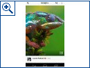 Flipboard f�r Android - Bild 4