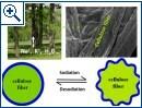 Schaubild zur Verwendung von Holzfasern in Akkus - Bild 1