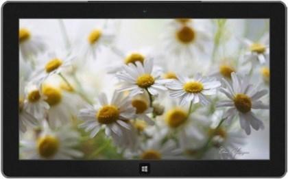 Windows Themes Winter 2013