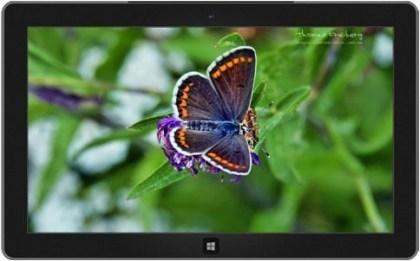 Gratis Windows Themes 2. Advent