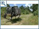 Google: Boston Dynamics Roboter - Bild 5
