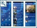 Sony Playstation Update 1.60 - Bild 2