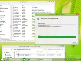 Windows 8.1 Update 1 Build 9600.17019